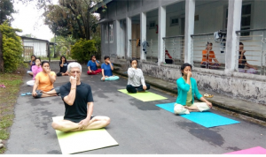 Yoga gallery II